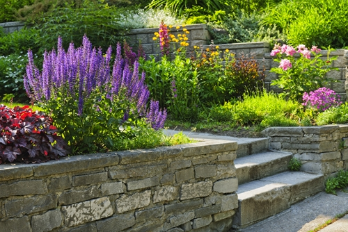 Try a few of this year's gardening trends if you're looking to spruce up your backyard!